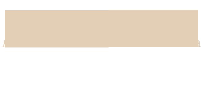 home_gnomos_slider_intro